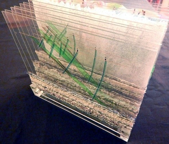 Mine Model / 5 x 8 x 7 inches, layered plexiglass sheets laminated with fabric, film and  dried plants